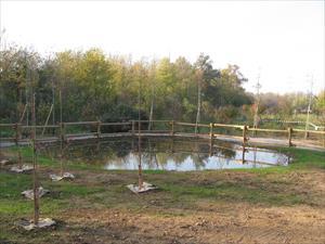 Area umida di Uboldo